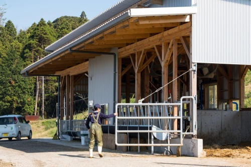 ブラウンスイスの牛舎と山羊舎(写真:新川博己)