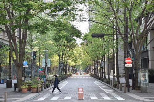 緊急事態宣言の発令で人出が減った東京・丸の内仲通り。2020年4月30日に撮影(写真:日経アーキテクチュア)
