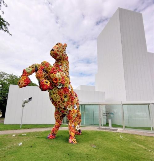 西沢立衛建築設計事務所が設計した十和田市現代美術館の外観(写真:日経クロステック)