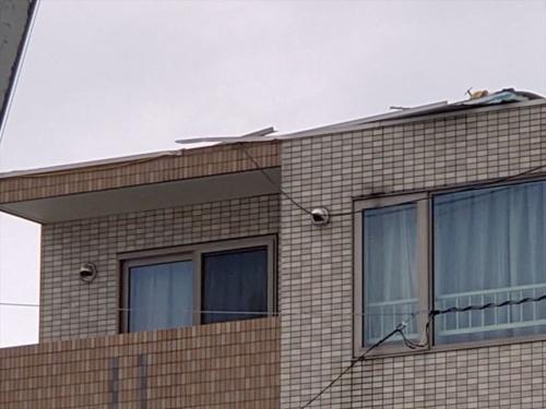 屋根にはパラペットの立ち上がりがほとんどないように見える(写真:栃木 渡)