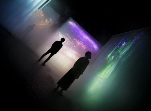 微細なミストが漂う空間に映像を照射する(写真:2020年ドバイ国際博覧会日本館広報事務局)