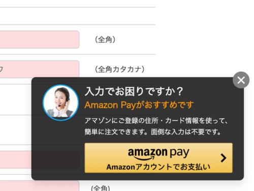 写真1●「Web接客型Amazon Pay」によるポップアップの例
