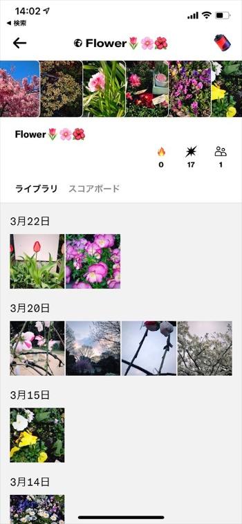 Dispoのロールにはメンバーが投稿した写真が集まる