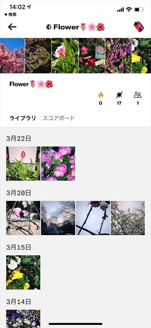 Dispoのロールにはメンバーが投稿した写真が集まる (出所:筆者)