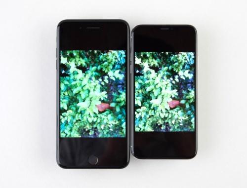 写真を表示。左のiPhone 7 Plusに比べて右のiPhone Xはさらにムダなエリアが多い