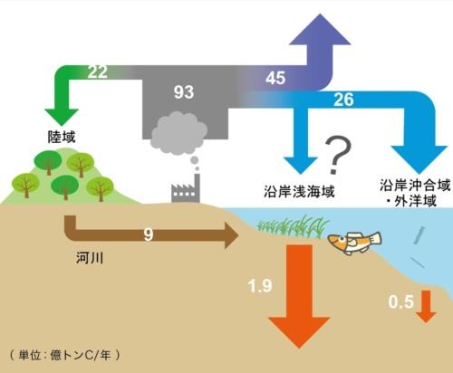 地球全体における炭素循環図。沿岸浅海域の海底堆積物には毎年1.9億トンの炭素が貯留され、その速度は沿岸沖合域や外洋域よりずっと速い。大気は「Quéré, C. L., et al.: Earth System Science Data, 8: 605-649 (2016)」、海洋は「Nellemann, C., et al.: UNEP, GRID-Arendal (2009)」、河川は「IPCC: AR5 (2013)」を参照