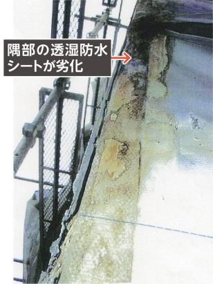 (写真:旭・デュポンフラッシュスパンプロダクツ)