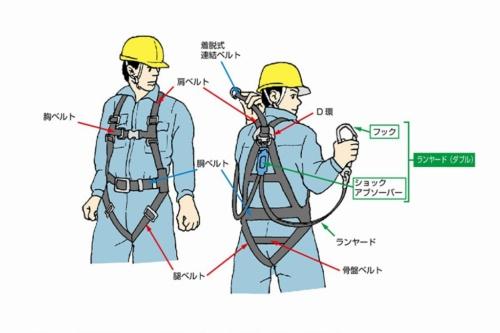 フルハーネス型安全帯の基本構造(資料:厚生労働省)