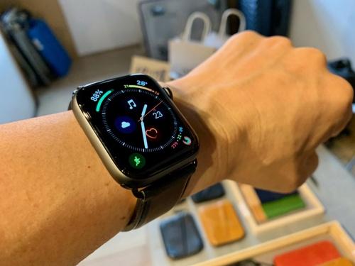 文字盤の表示がこれまでよりも素早い。腕時計として使うには最も重要な性能だ。これだけでも併売されているSeries 3よりもSeries 4をお薦めしたい