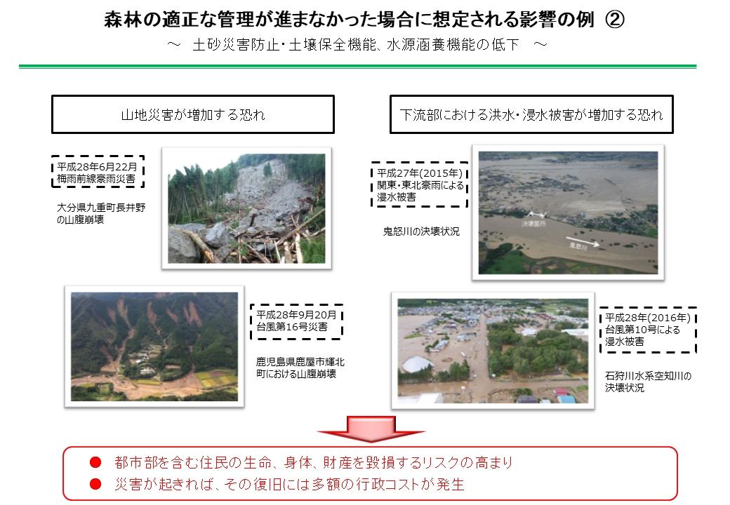 森林の適正な管理が進まなかった場合に想定される影響の例(資料:林野庁)