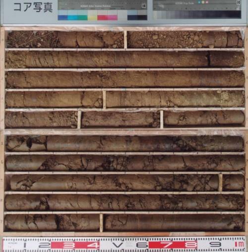 ボーリングコアの写真。若手技術者はこれを見て、粘性土だと判断した