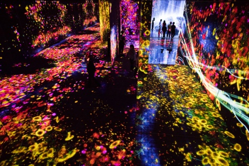 2018年6月に東京・お台場にオープンした「森ビル デジタルアート ミュージアム:エプソン チームラボ ボーダレス」。オープンから5カ月で来場者数100万人を突破し、3人に1人が海外からの来場と発表している。写真は「花の森、埋もれ失いそして生まれる / Flower Forest: Lost, Immersed and Reborn」。別の作品『追われるカラス、追うカラスも追われるカラス、そして境界を越えて飛ぶ』が、隣の部屋から飛び込んできている(写真:西田 香織)