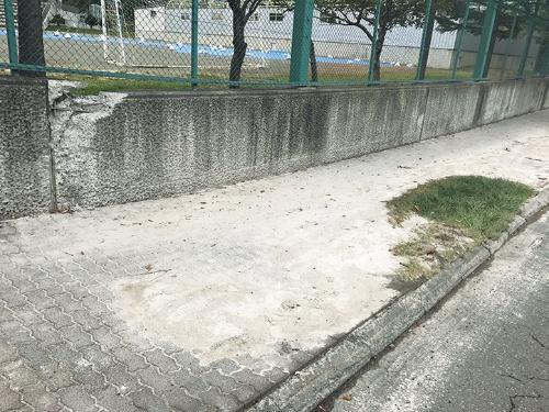 〔写真1〕 噴砂が出て塀が不同沈下