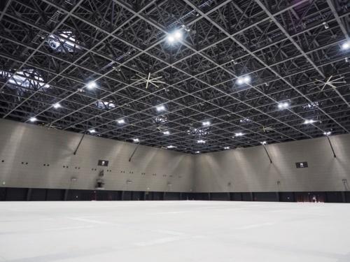展示ホールA。天井高20mの無柱空間だ。コンサート、ショー、ライブイベントに対応する。シアタースタイルでは約6500人の収容が可能だ。主催者事務室、商談室、主催者用倉庫などが付属している(写真:日経アーキテクチュア)