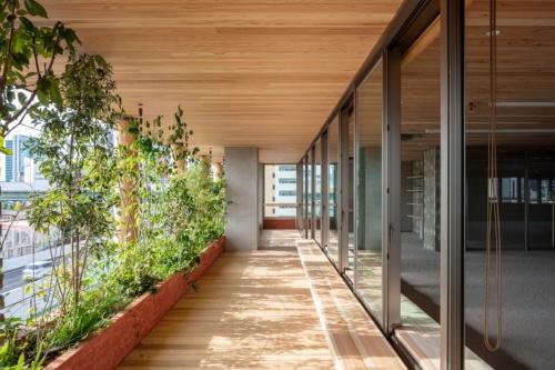 従来の窓面から2.5mセットバックして設けたベランダ空間。吉野杉の庇(ひさし)やベンチ、ウッドデッキを設置(写真:浅沼組)