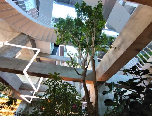 ロビーラウンジの中央に置かれた大きな植物。館内は観葉植物であふれている。植木がロビー空間を緩やかに仕切る。緑の回りにはソファや椅子、テーブルを数多く配置(写真:日経クロステック)