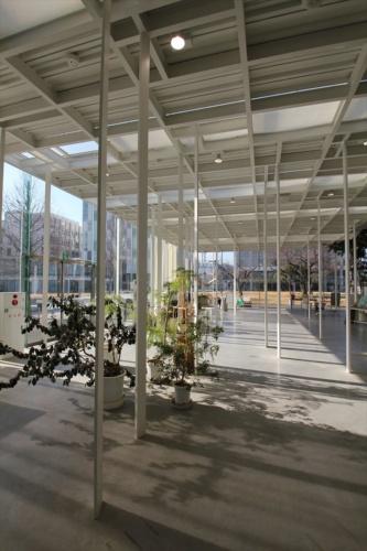 森のように不規則に立つ白い柱。何の建物か分かりますか(写真:日経アーキテクチュア)