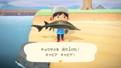 ムシとりを楽しんだり、釣りを楽しんだりと、心の向くままにあらゆることを楽しめる。