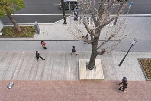 イチョウ並木の間にウッドデッキの空間を設けた歩道(写真:生田 将人)