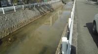 白濁した津門川(写真:JR西日本)