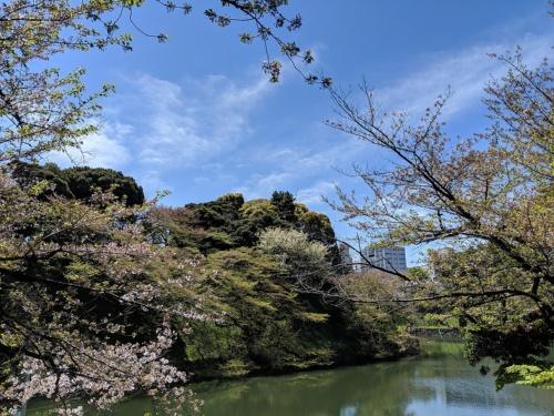 Pixel 3で撮影。空の青や樹木の緑が鮮やかに撮れた
