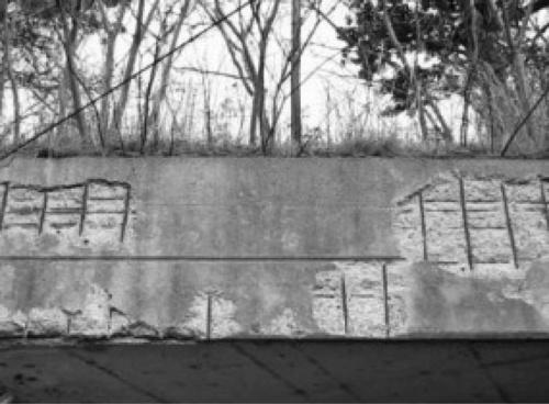 写真1■ 中性化によるかぶりコンクリートの剥離
