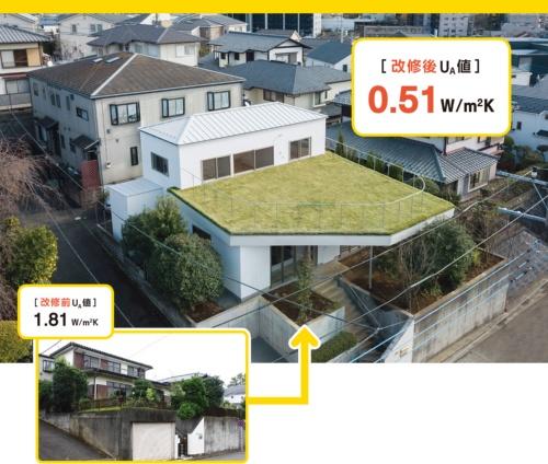 〔写真1〕芝の屋根が深い軒に