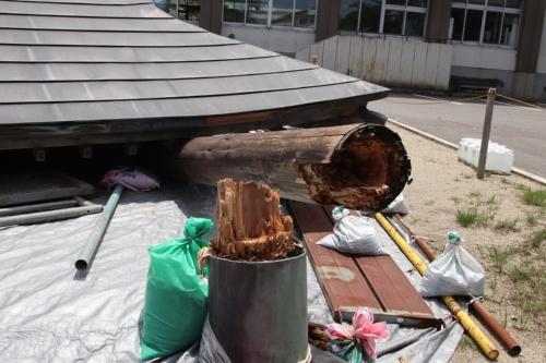 根元で折れた相撲場の柱。老朽化が進んでいたとみられる(写真:日経アーキテクチュア)