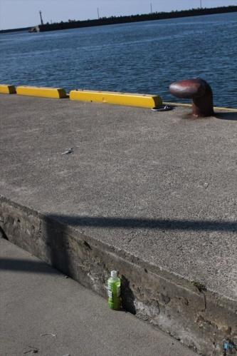 鼠ケ関港の第二物揚げ場に生じた段差のうち、最も大きいものは30cmを超える。2019年6月20日に撮影(写真:日経 xTECH)