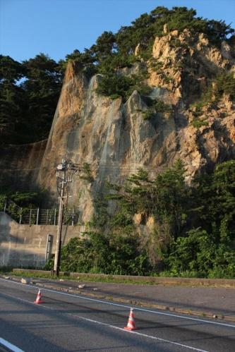 弘法トンネル付近の斜面の様子。2019年6月20日に撮影(写真:日経 xTECH)