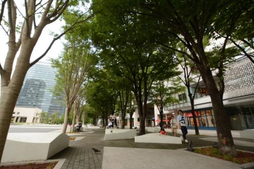 横浜美術館前のグランモール公園。保水性レンガの下には、雨水を貯留・浸透し、蒸発散作用を通して大気を冷却するグリーンインフラの要素技術を採用した(写真:日経コンストラクション)