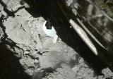 図2 2回目のタッチダウンの様子を捉えたサンプラーホーン撮影用小型モニターカメラ「CAM-H」の画像の一部