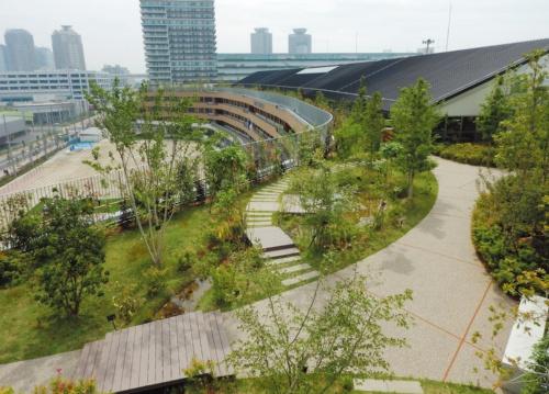 ビオトープのある屋上庭園(写真:今田 耕太郎)