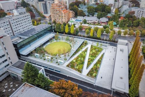 アリーナの屋上部分に設けた「戸山の丘」を見下ろす(写真:新建築社写真部)