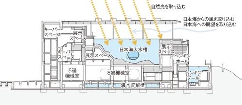 上越市立水族博物館の断面図。大水槽は施設のかなりの部分を占めている。大水槽の最深部付近には水中トンネルがある(資料:日本設計)
