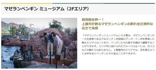 マゼランペンギン飼育数世界一を説明するページ(写真:「上越市立水族博物館 うみがたり」のウェブサイト)