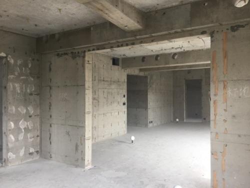 コンクリートの躯体だけを残し、スケルトン状態にした既存棟の内部(写真:竹中工務店)