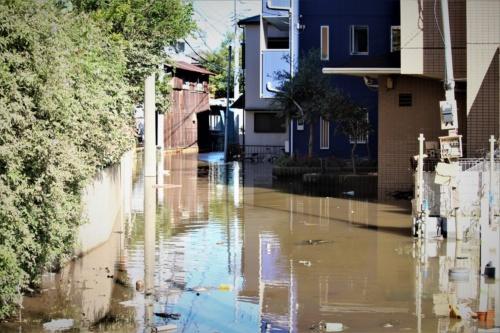 多摩川水系の平瀬川の氾濫によって浸水した川崎市高津区の住宅地。2019年10月13日撮影(写真:日経 xTECH)