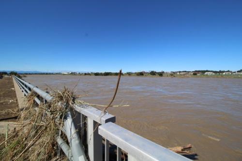 台風一過の多摩川。平瀬川の多摩川との合流地点付近の様子。10月13日撮影(写真:日経 xTECH)