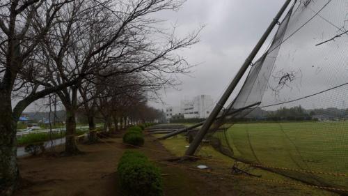 フェンスの支柱が西側に倒れていた市津多目的グラウンドの東側。上の図の写真2に該当(写真:防災科学技術研究所)