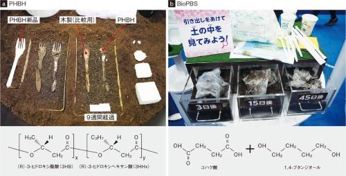 図2 日本の代表的な生分解性プラスチック