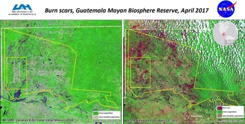 グラウンドトゥルースの例。2017年にグアテマラ共和国で発生した森林火災の状況を、米地質調査所(USGS)が運用する地球観測衛星「ランドサット8」で撮影した画像。森林火災前(左)と森林火災後(右)では、確かに変化が起きているが、どこが森林火災で樹木が焼失した場所なのかは現地に行ってグラウンドトゥルースを調べないと分からない。逆に一度グラウンドトゥルースを入手できれば、それを使って衛星の撮影した画像を解析し、地球全体の広範な地域の情報を入手できる。(出所:NASA)