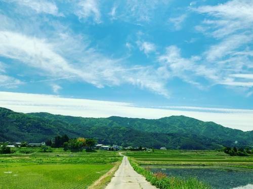 図2 スワニー社屋へ向かう道から眺める青い空と山々