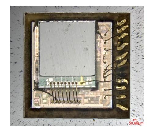 図5 樹脂モールドを取り除いた圧力センサー「STMicroelectronics LPS22」