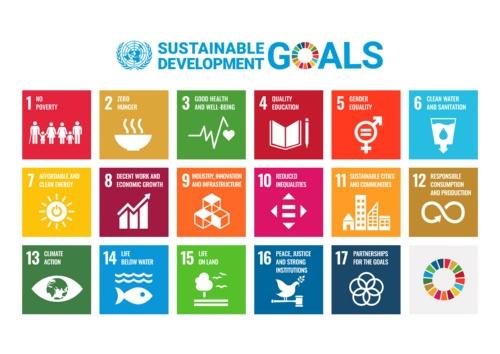 SDGsは、2015年9月の国連サミットで全会一致で採択された国際目標。(出所:国際連合広報センター)