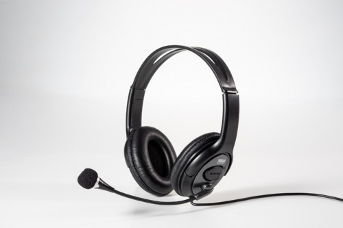 音声チャットを長時間するなら、ヘッドセットがあると便利だ。写真はサンワサプライの「MM-HS516」