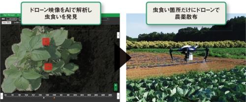 図 オプティムの「ピンポイント農薬散布・施肥テクノロジー」の仕組み
