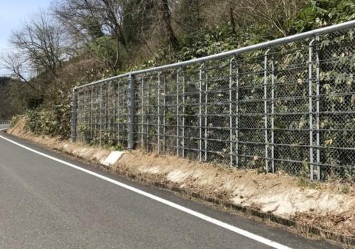 鳥取県が県道沿いに整備した高エネルギー吸収落石防護柵(写真:鳥取県)