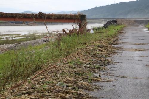 熊本県人吉市大柿地区の球磨川左岸堤防上で上流方向を見たところ。川側の草が堤内側に倒れている。草が引っ掛かっている赤い橋は橋桁が流出した天狗橋。7月10日撮影(写真:水源地環境センター)