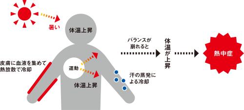 熱中症に至るメカニズム。通常は体温が上昇すると汗の蒸発や皮膚側への血流増加による冷却によって体温上昇を抑える。この機構が破綻すると体に熱がたまって熱中症に至る。環境省の資料を参考にして日経クロステックが作成